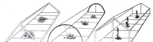 Формы парников: 1-двускатная, 2- арочная, 3- двускатная домиком