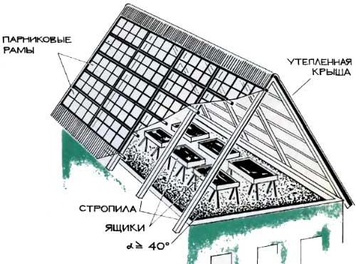 Устройство теплицы на крыше