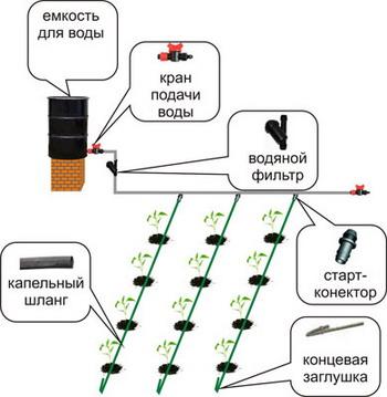 Схема системы полива клубники