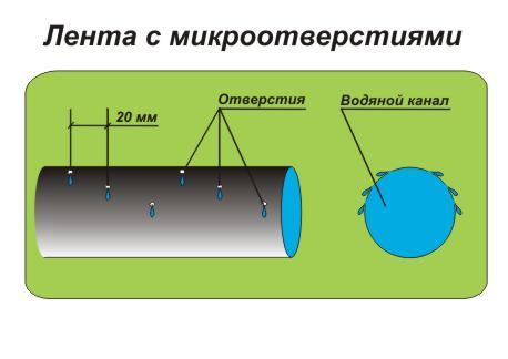 Схема ленты для капельного
