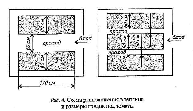 Схема расположения в теплице и