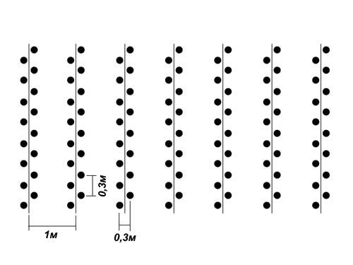 Особенности устройства гряд