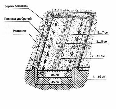 Схема узкой грядки по методу