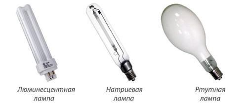 Виды ламп для освещения теплиц