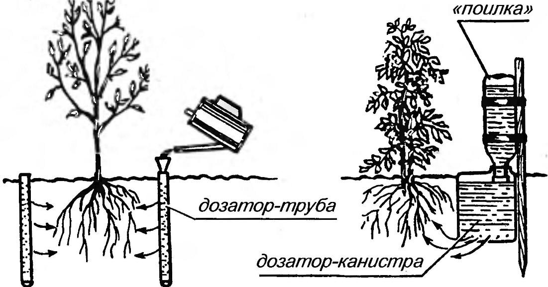 Пример схемы внутрипочвенного