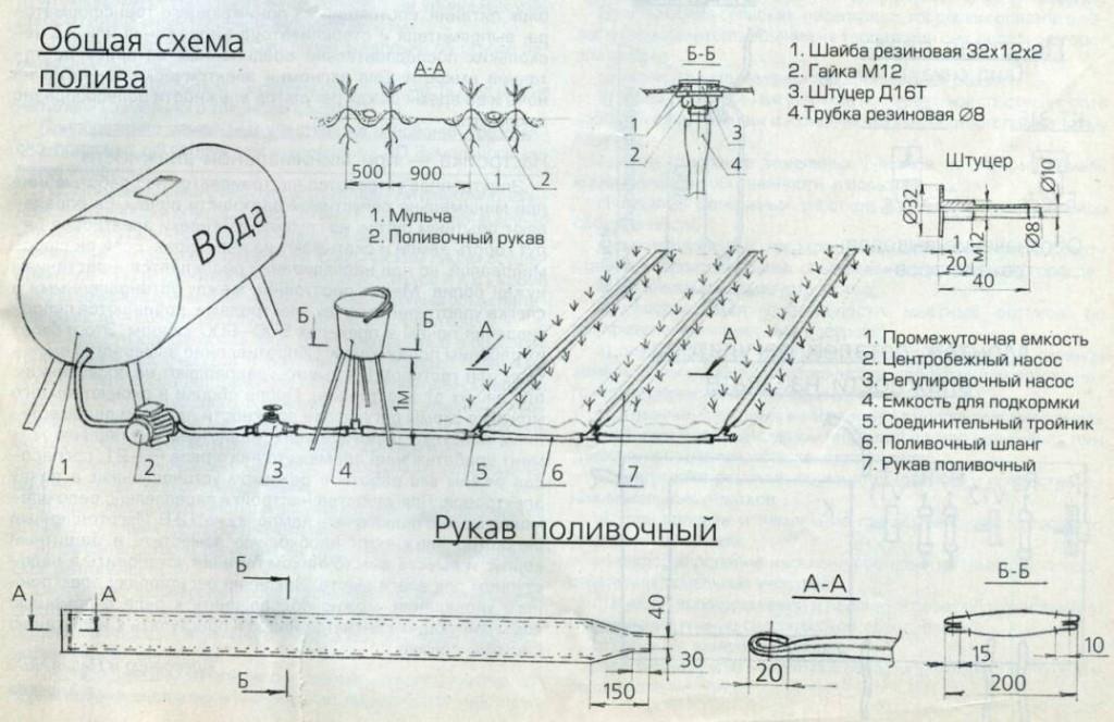 Общая схема устройства капельного полива
