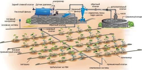 Схема системы автоматического капельного полива