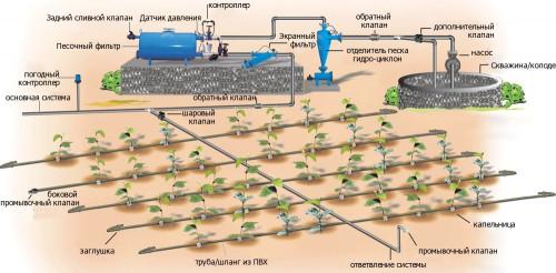 Схема автоматической системы капельного полива