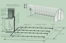 Схема системы капельного полива в теплице