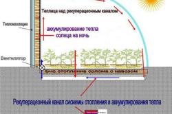 Схема биологического обогрева теплицы