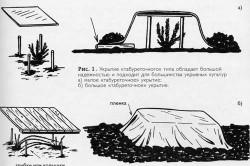 Схема укрытия растений пленкой
