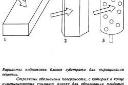 Варианты подготовки блоков субстрата для выращивания вешенки