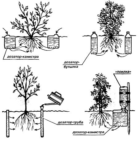 Автоматический капельный полив растений в теплице